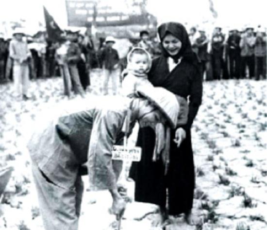 Vấn đề ruộng đất trong cách mạng dân tộc dân chủ ở miền Nam thời kỳ 1954 - 1975