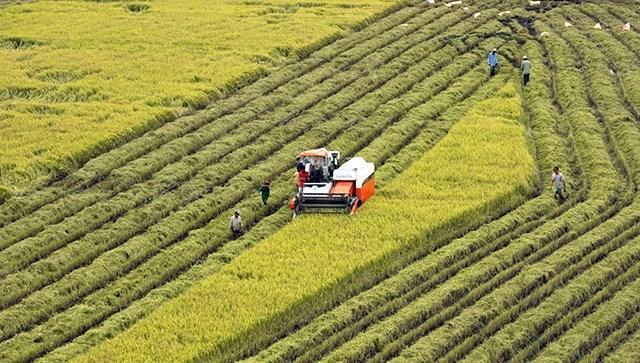 Tín dụng ở nông thôn Việt Nam